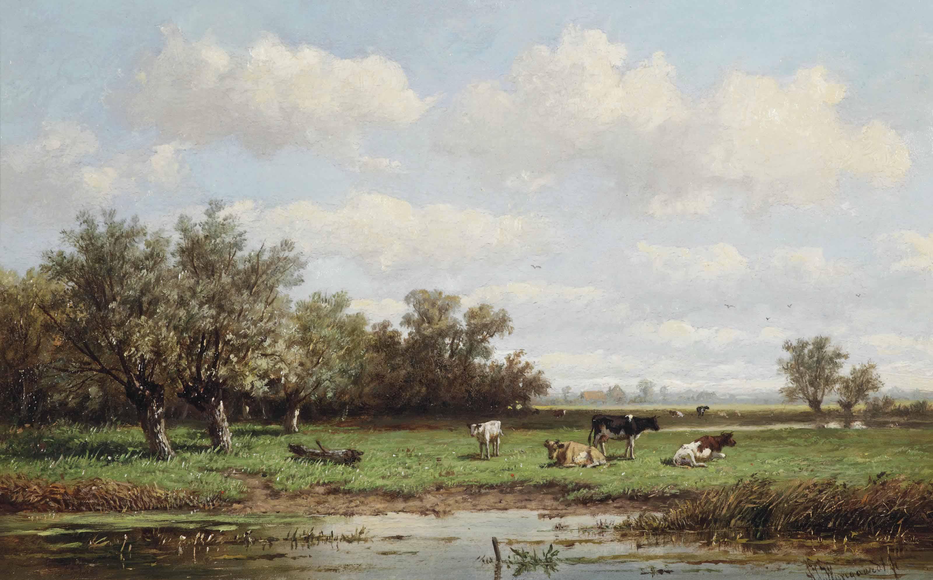 Cattle in a summer polder landscape