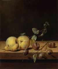 Quinces and medlars on a ledge