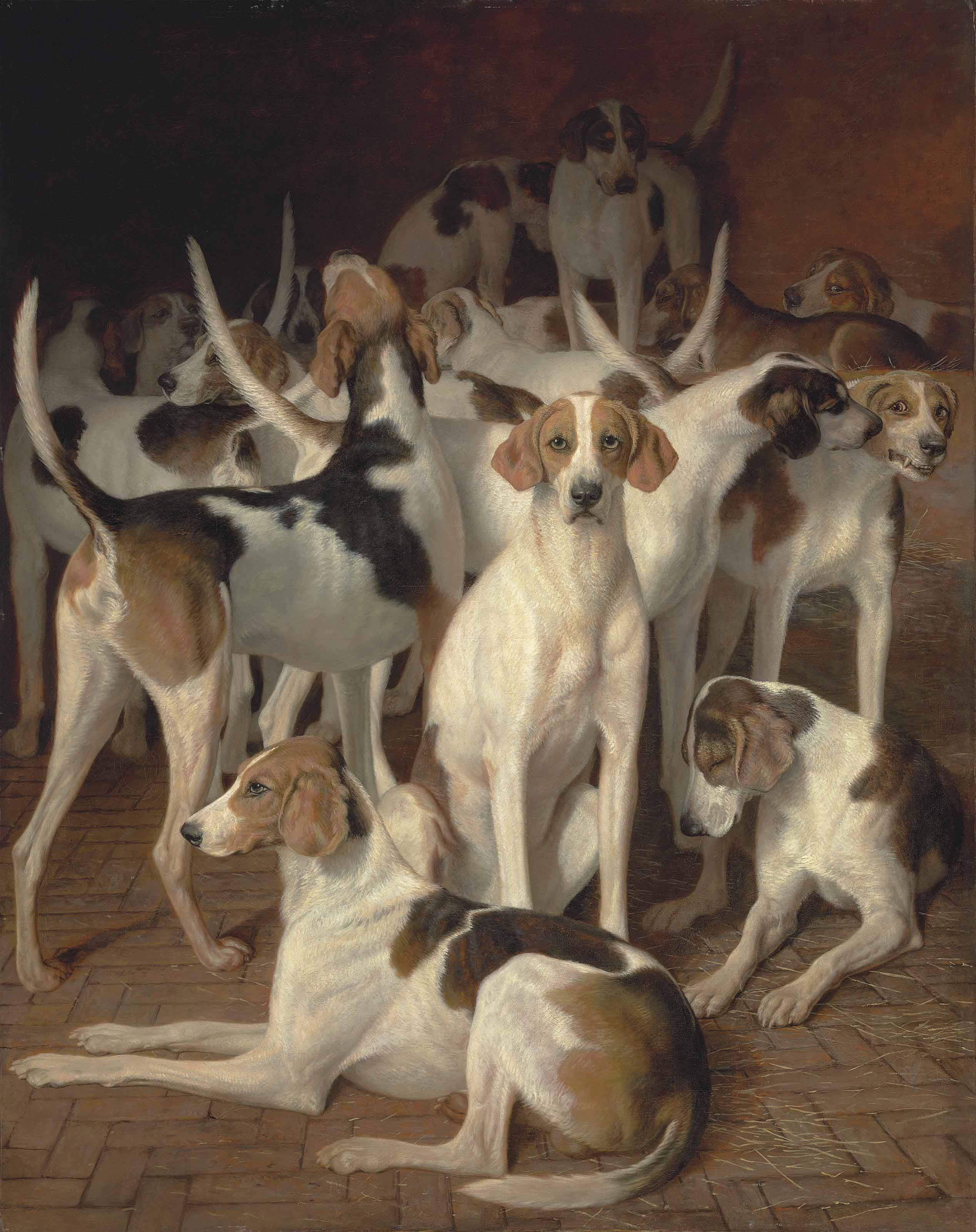 Hounds in a kennel