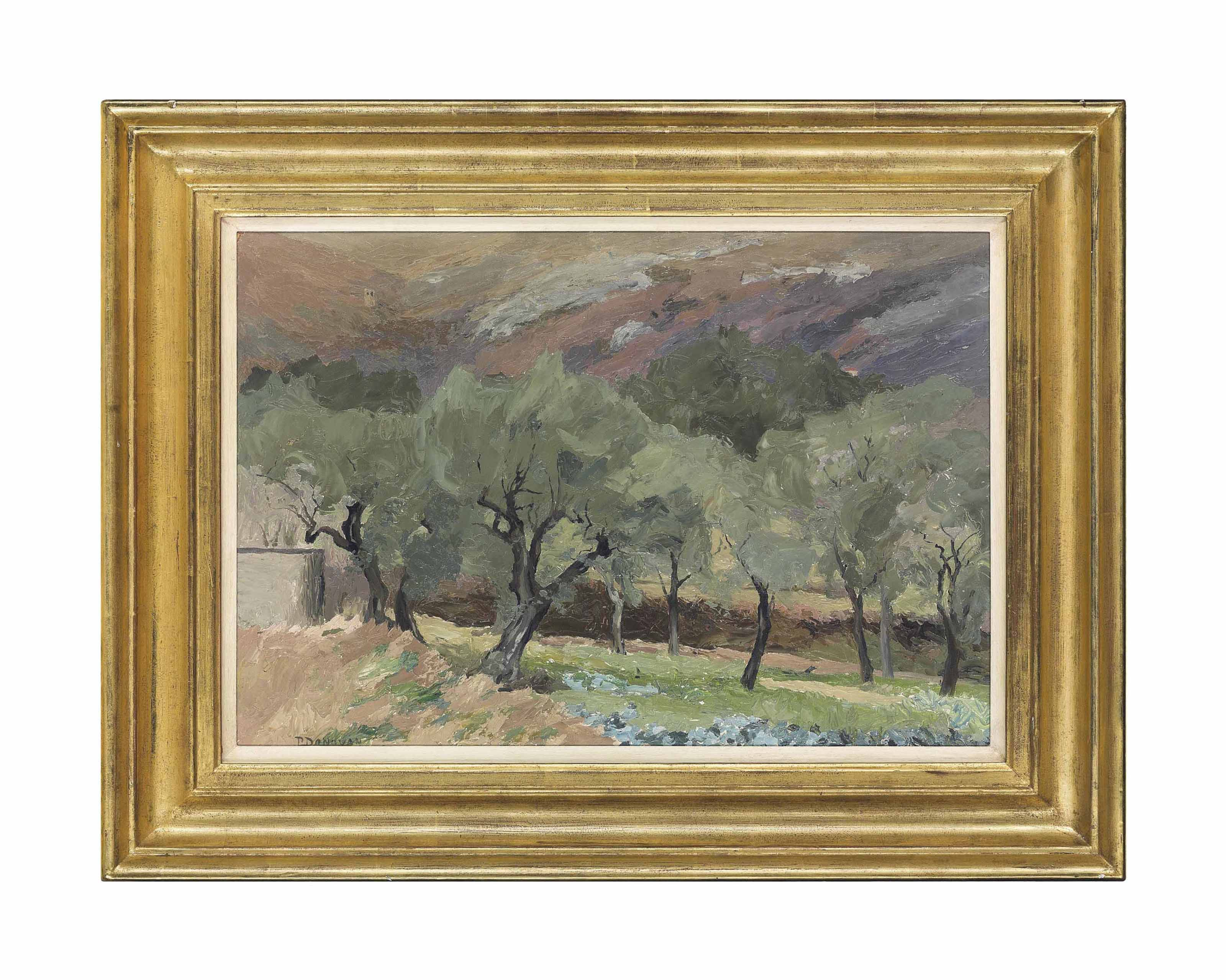 Orchard, Provence