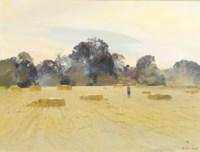 Figure in a cornfield