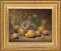 Grapes, apples, plums, pear and a thistle on a mossy bank