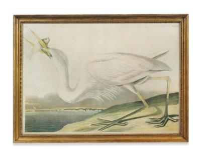 After John James Audubon
