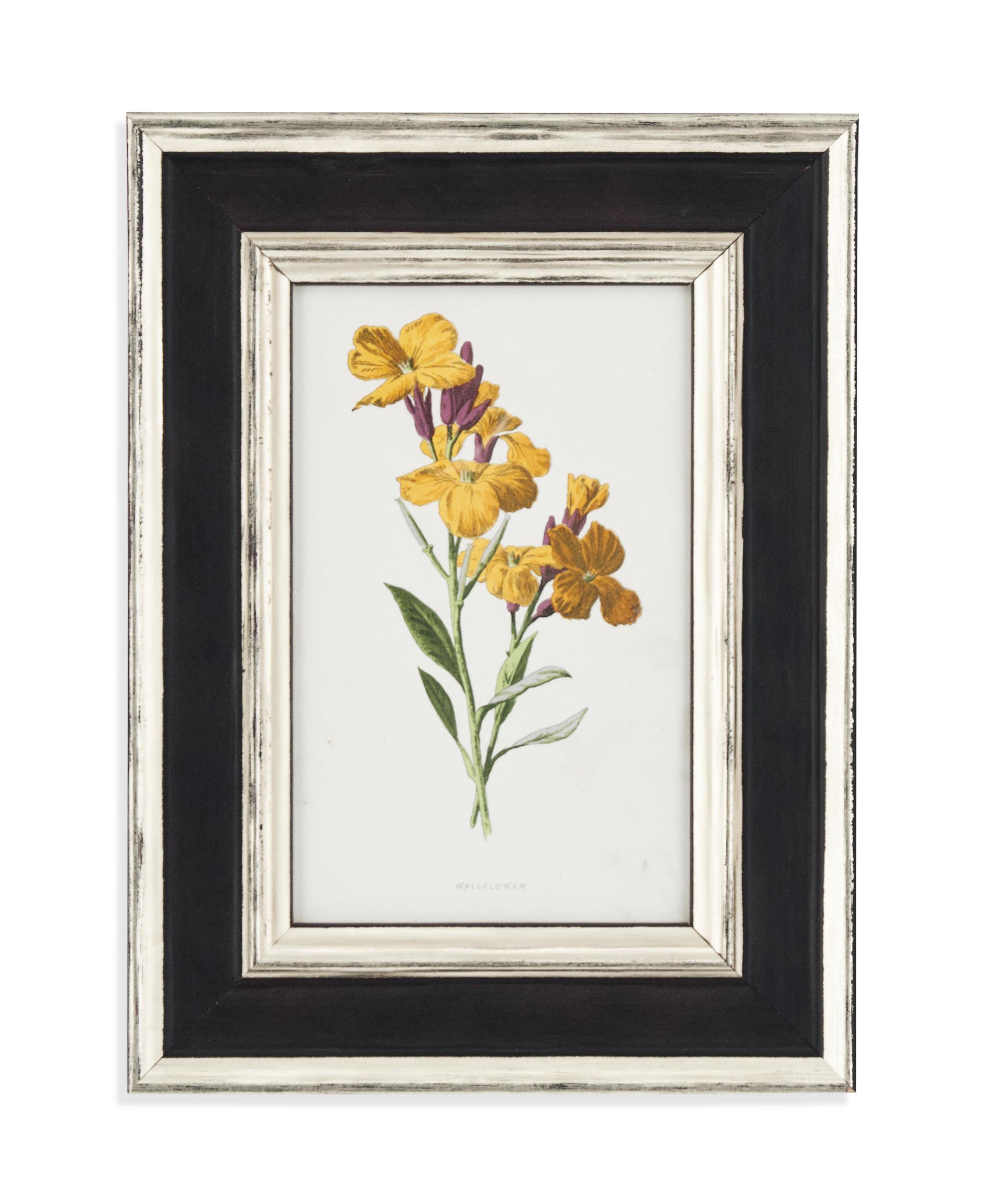 SIXTEEN CHROMO-LITHOGRAPHS OF GARDEN FLOWERS
