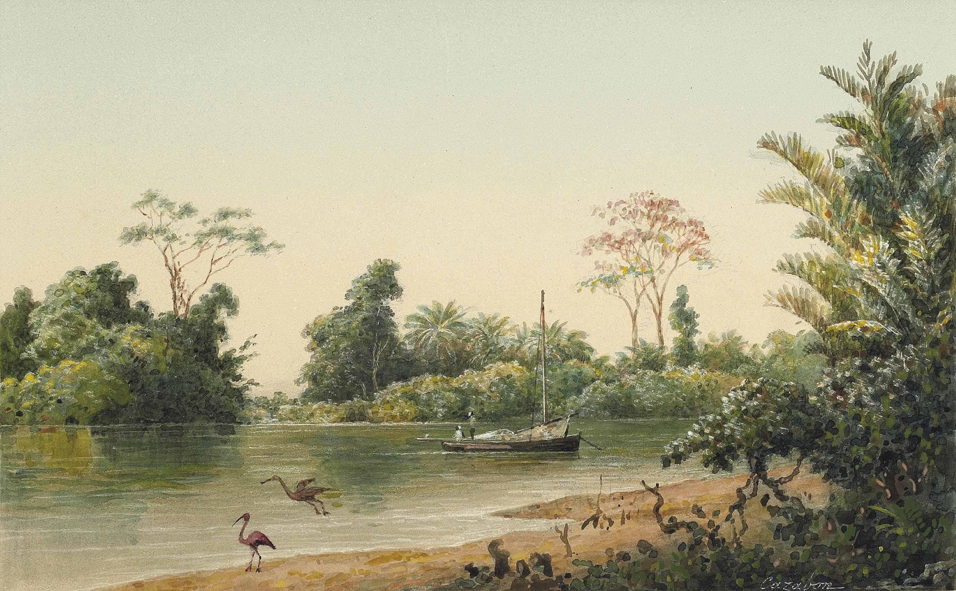 Caroni River, Trinidad