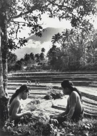 The Sacred Mountains of Bali, 1953