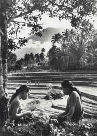 The Sacred Mountains of Bali, 1953