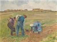 'Digging Potatoes'