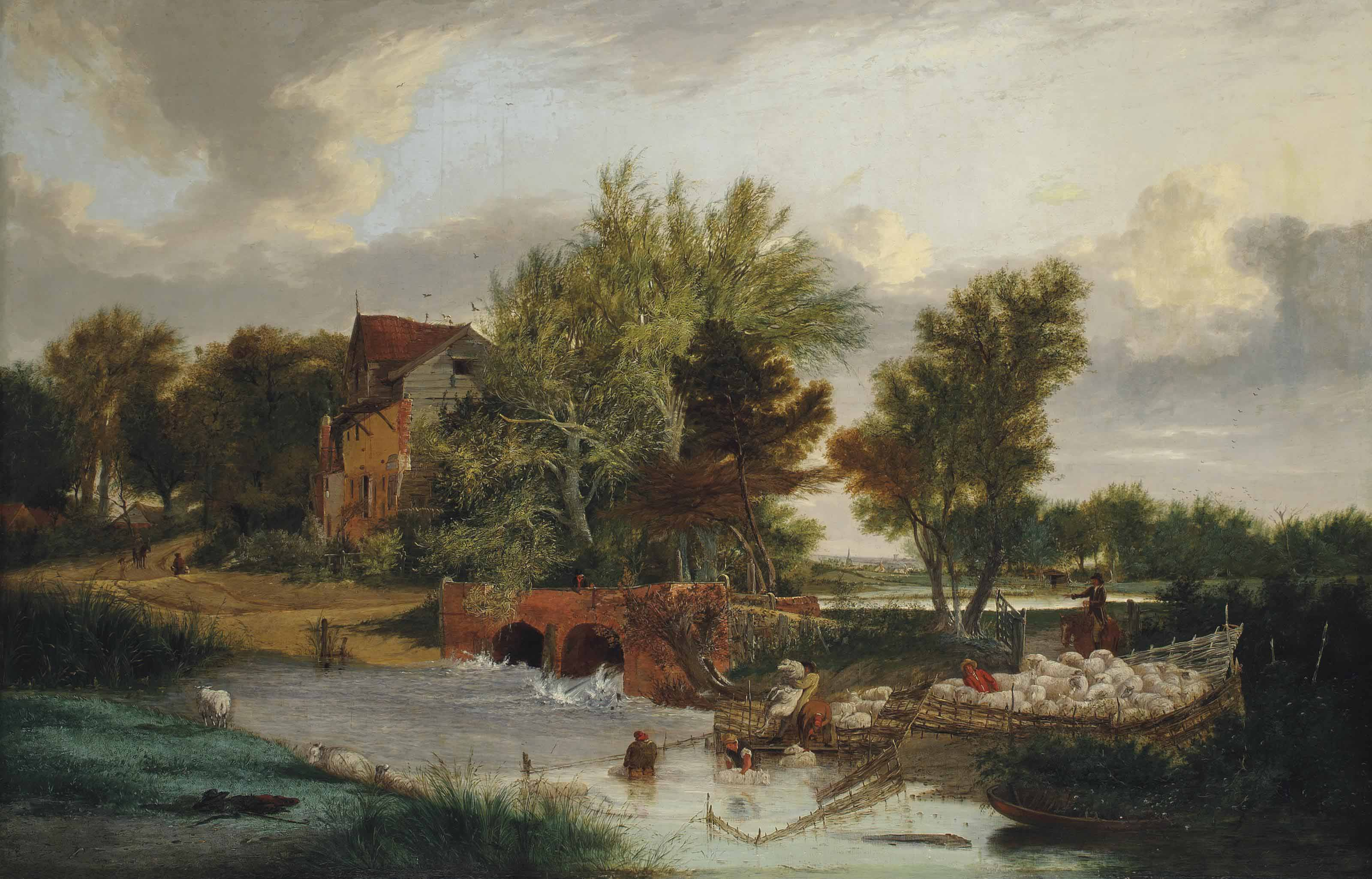 Sheep dipping at Trowse Mill, Norwich
