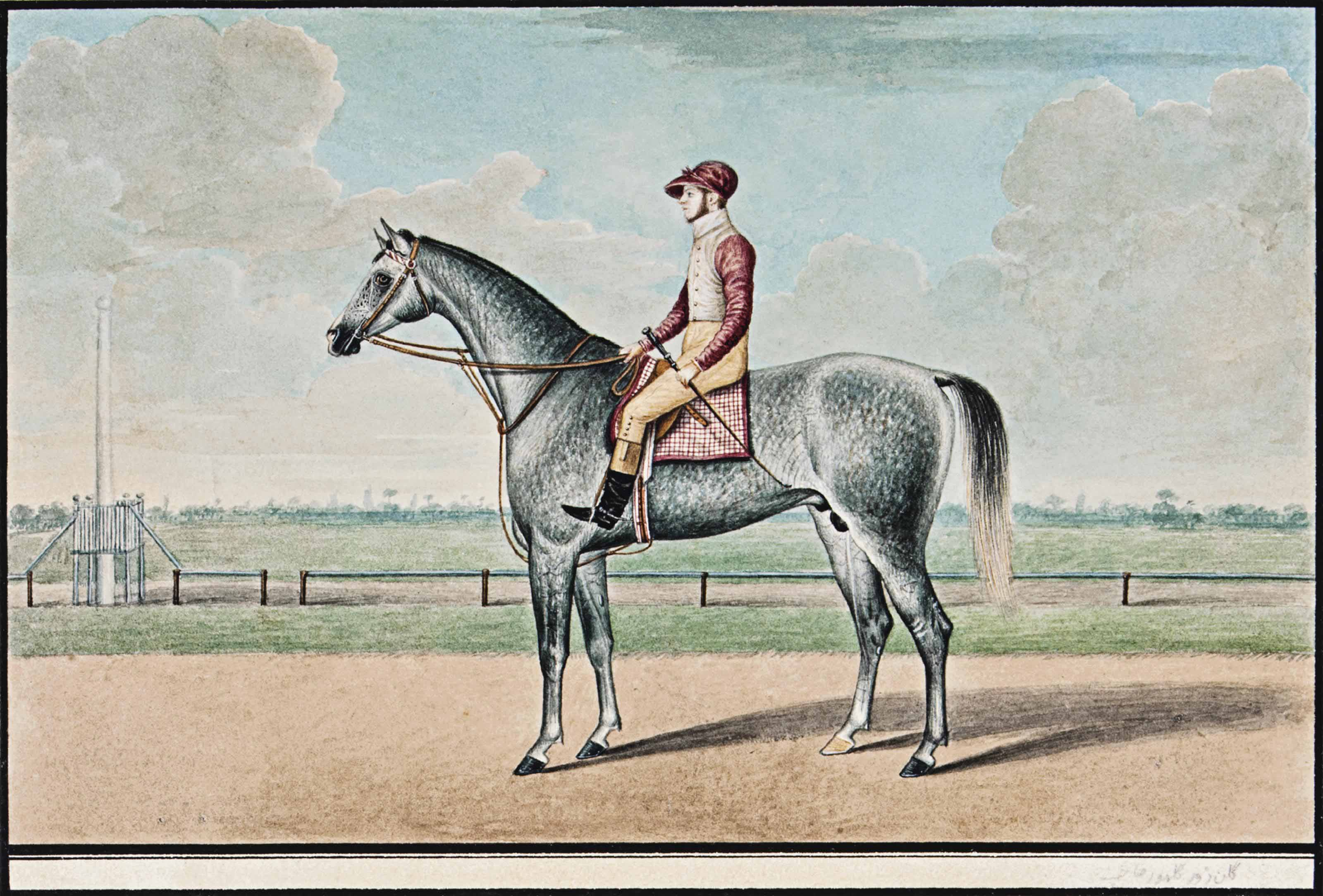 A GREY RACEHORSE AND JOCKEY