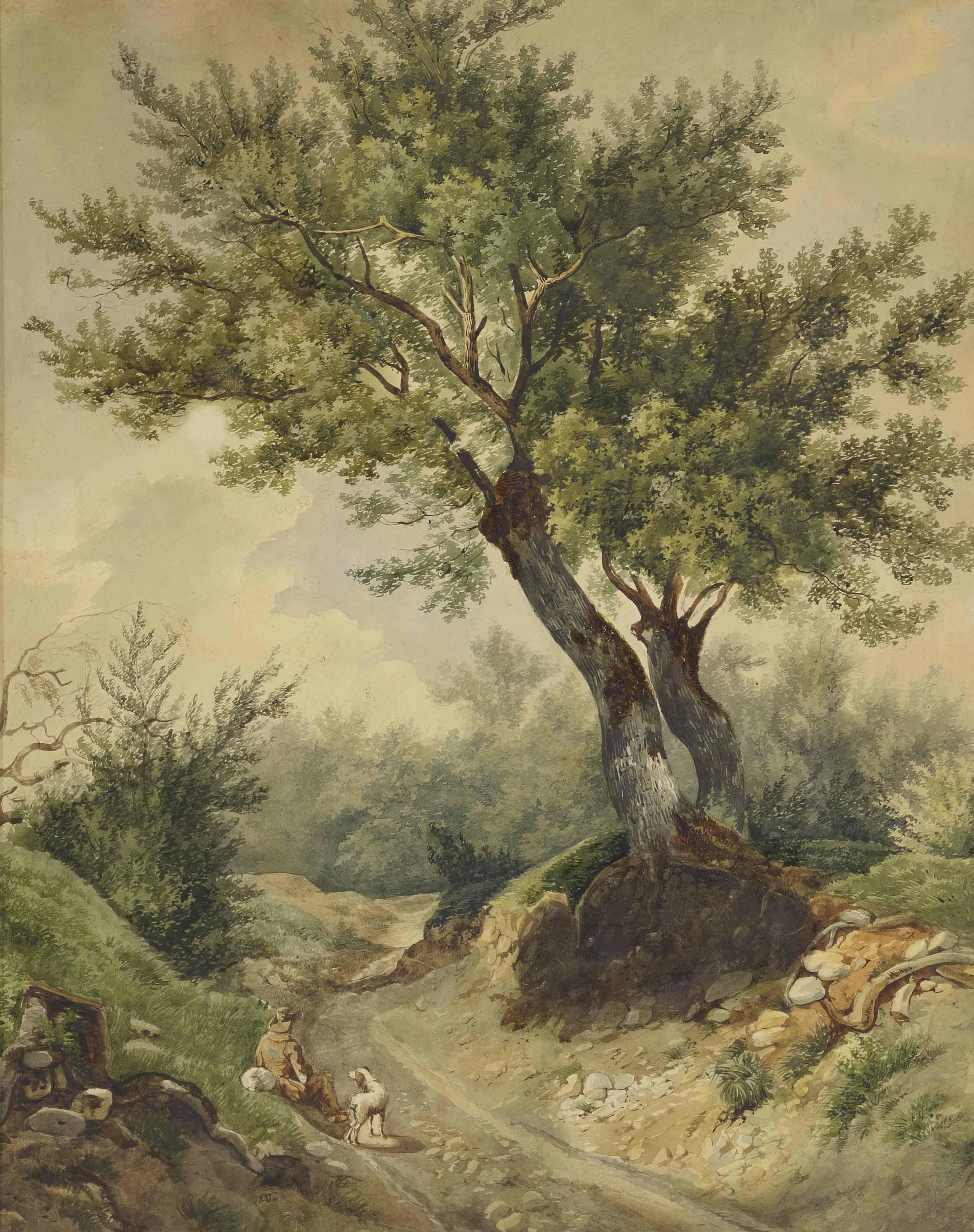 Personnages et grands arbres
