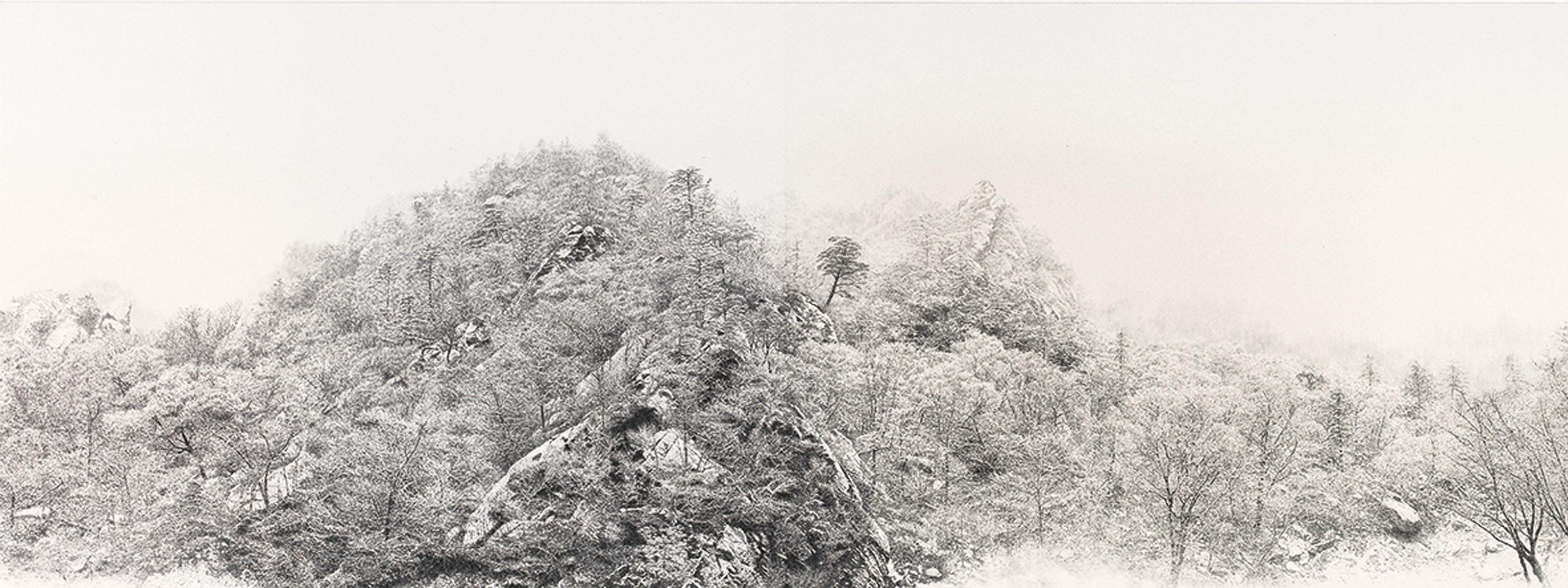 Auspicious Snow 2