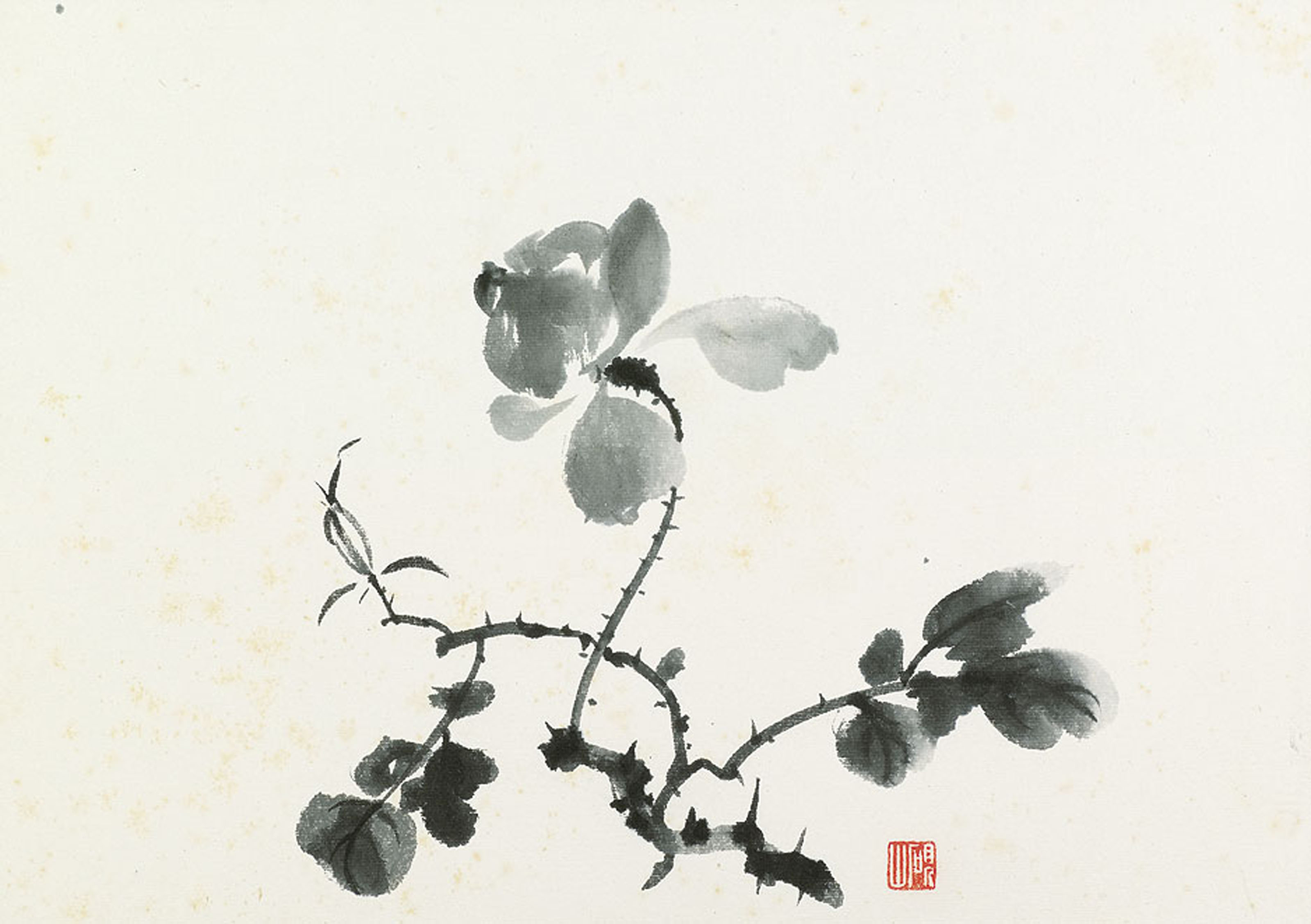 Album of Flowers