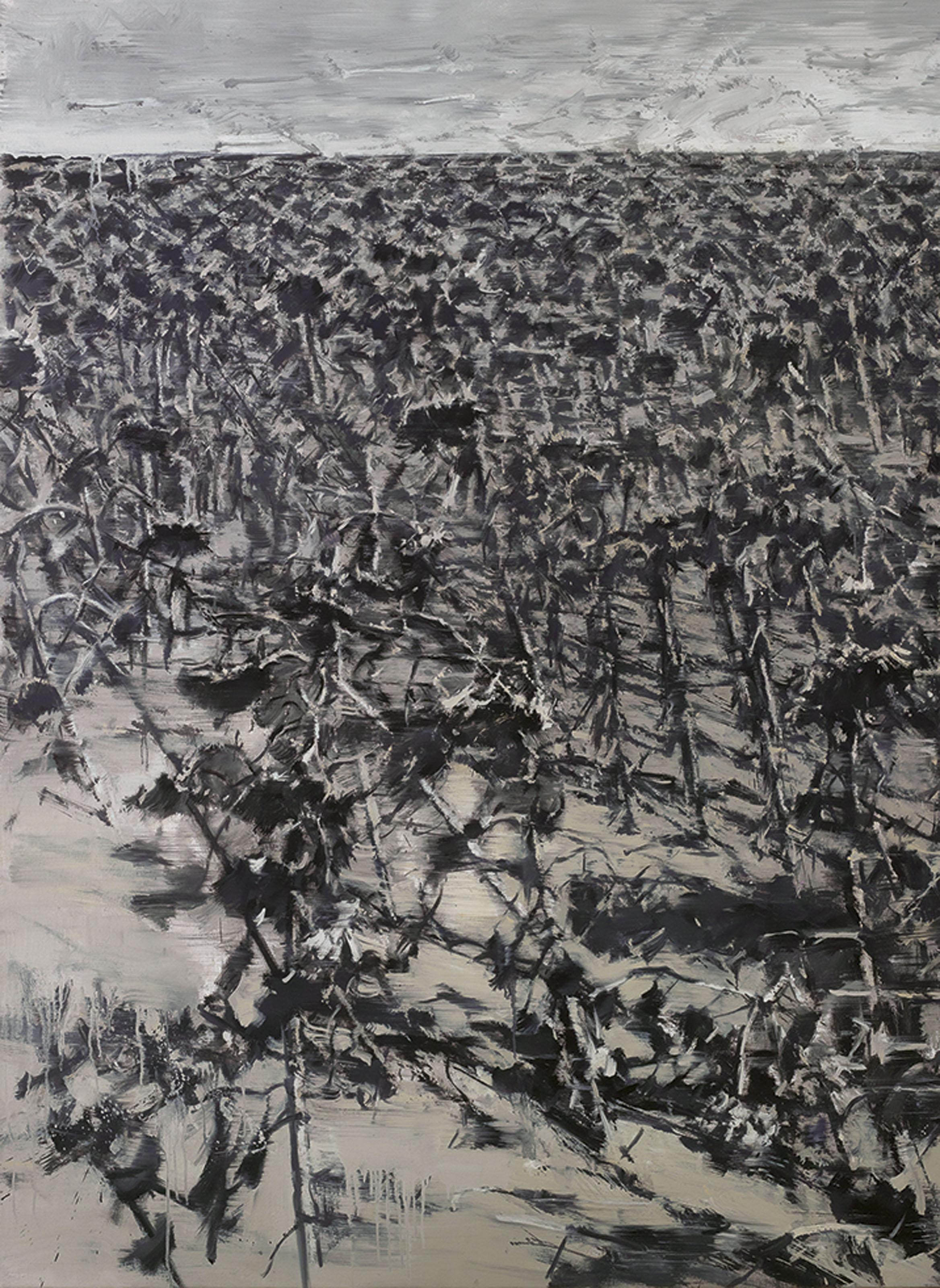 Twelve Views of a Sunflower Field XI