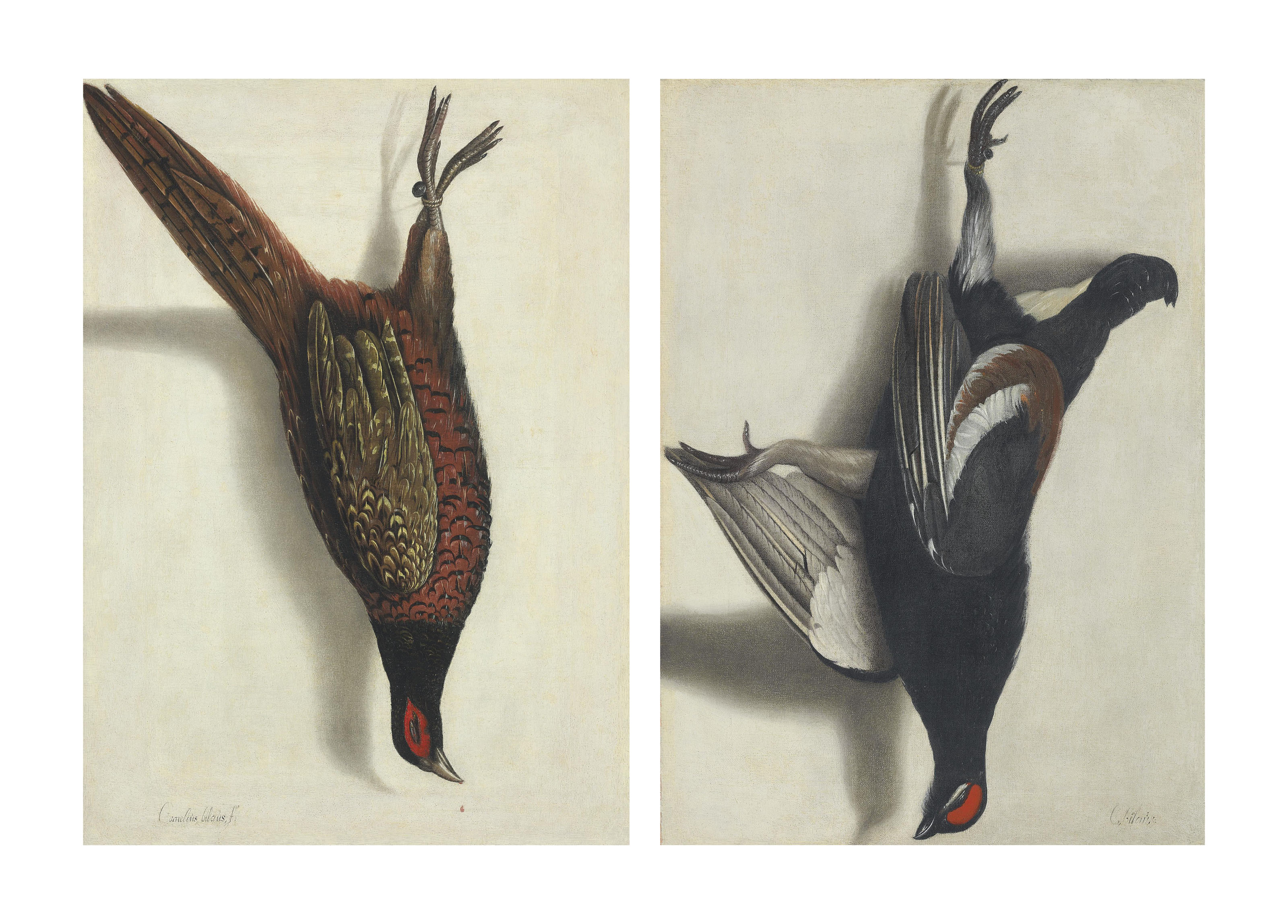 A trompe l'oeil of a hanging pheasant; and A trompe l'oeil of a hanging black grouse