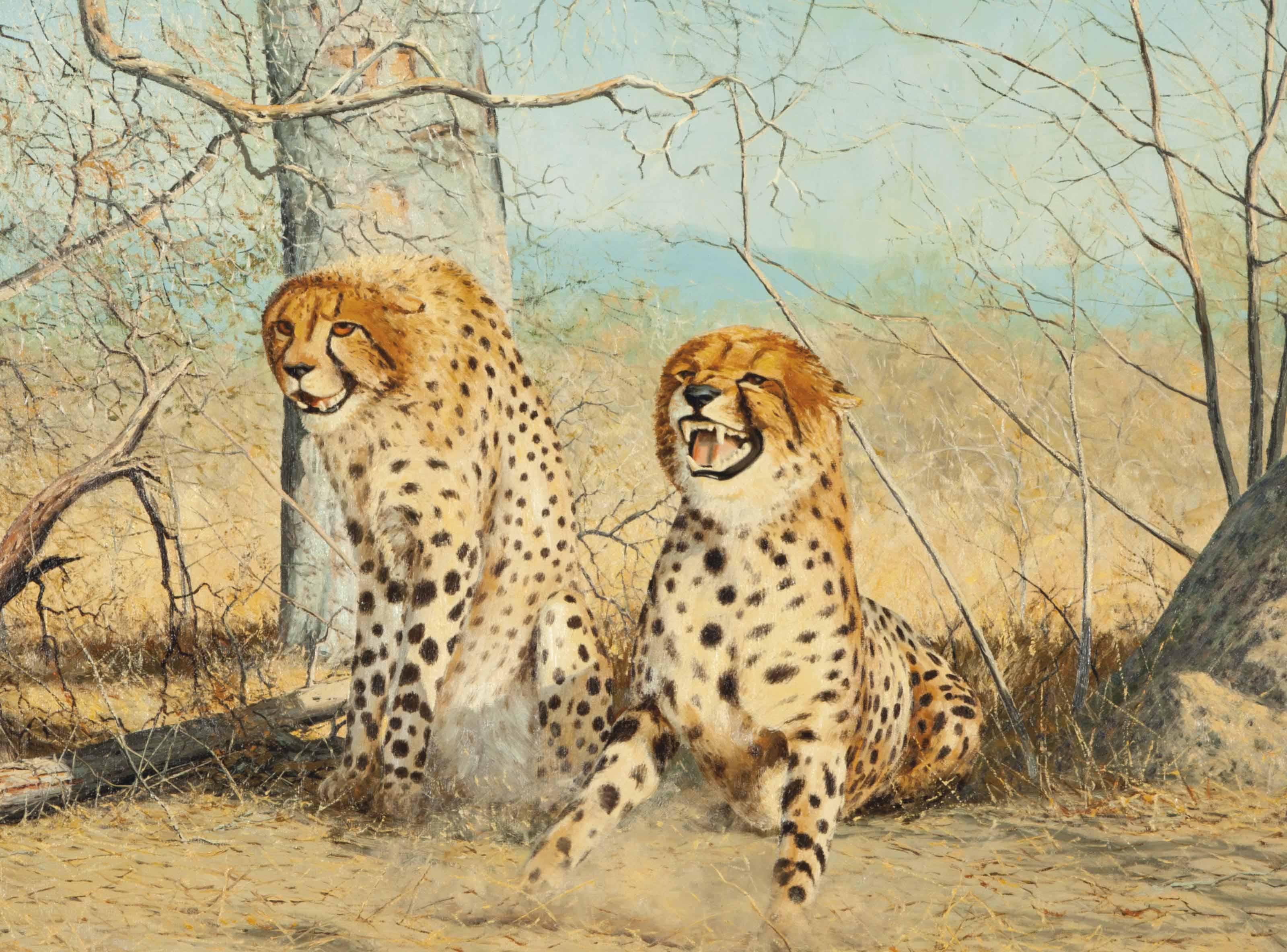 Tugetala, Two Cheetahs on Guard
