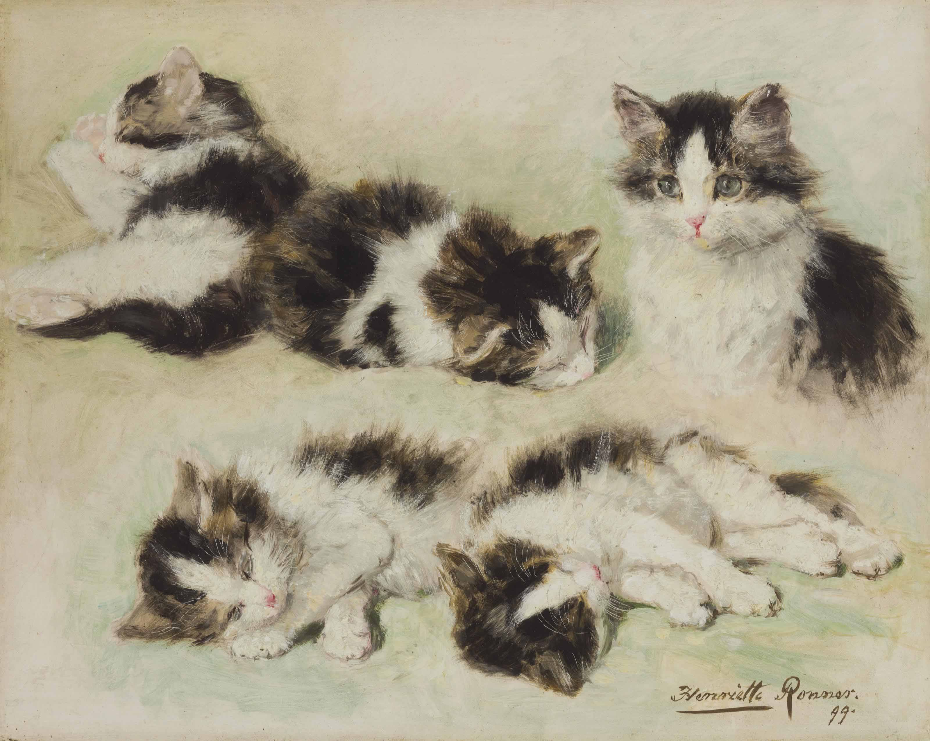 Studies of Kittens