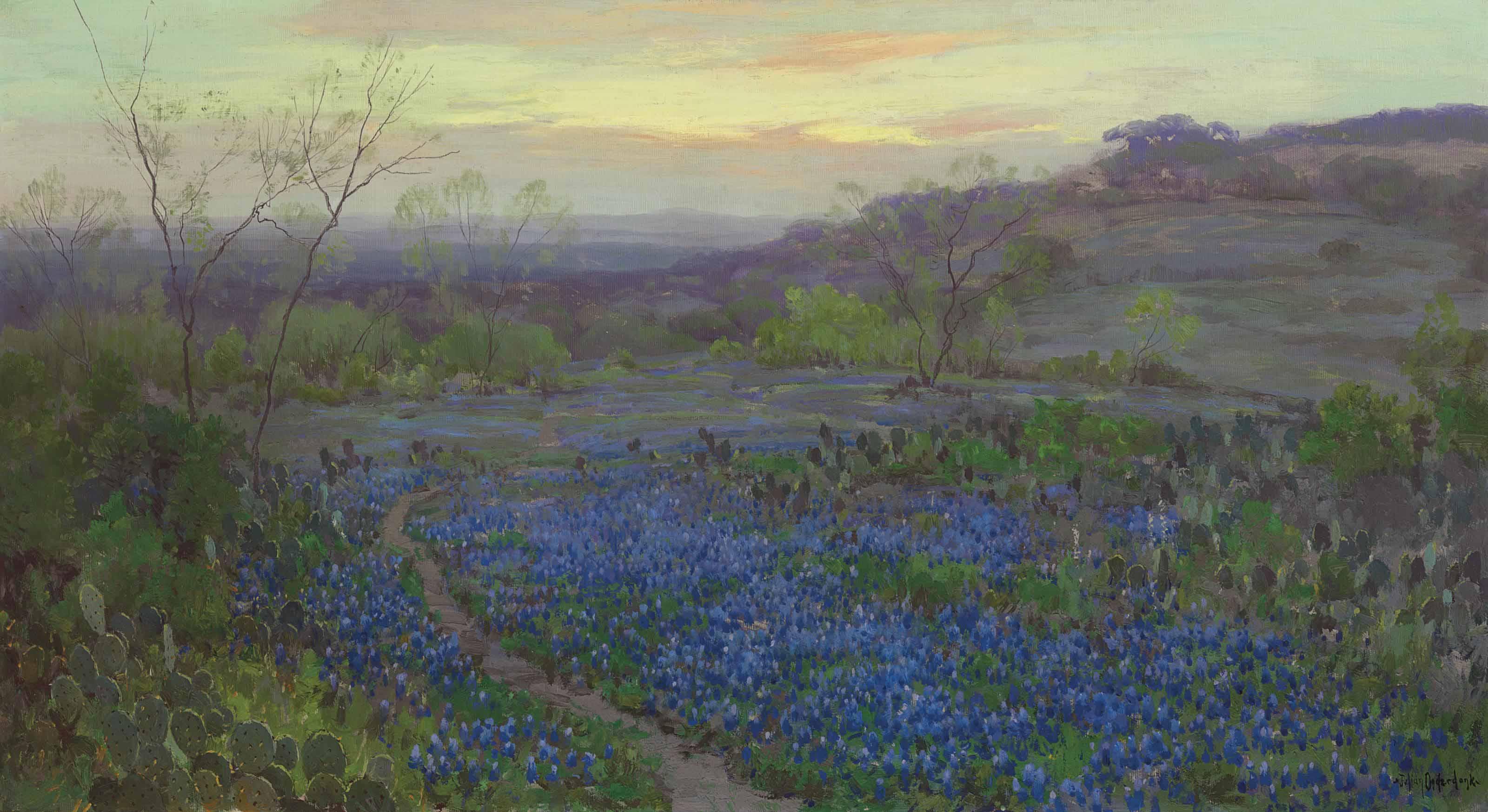 Blue Bonnets at Twilight
