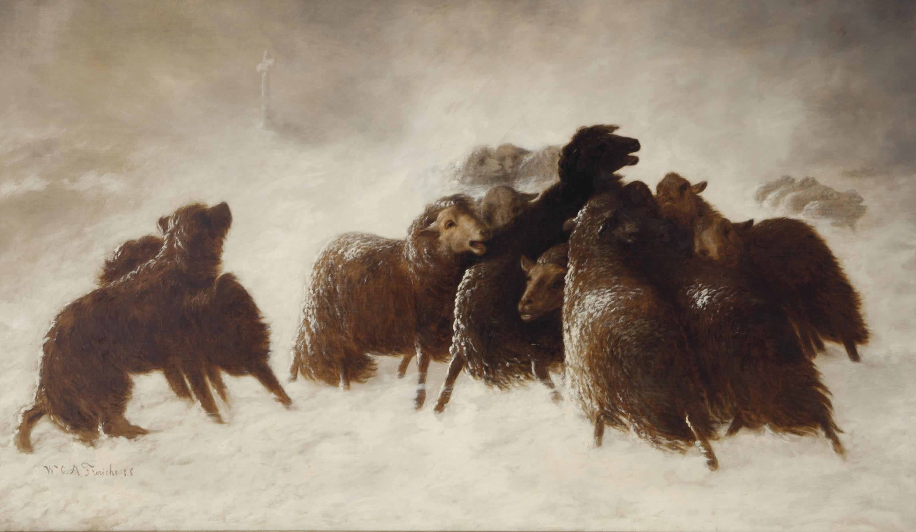 Sheep in a snow storm
