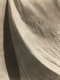 Untitled (Texture and Shadow), 1924-1926