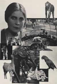 Zoo ('Pro Eto'), 1923