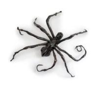 Spider IV