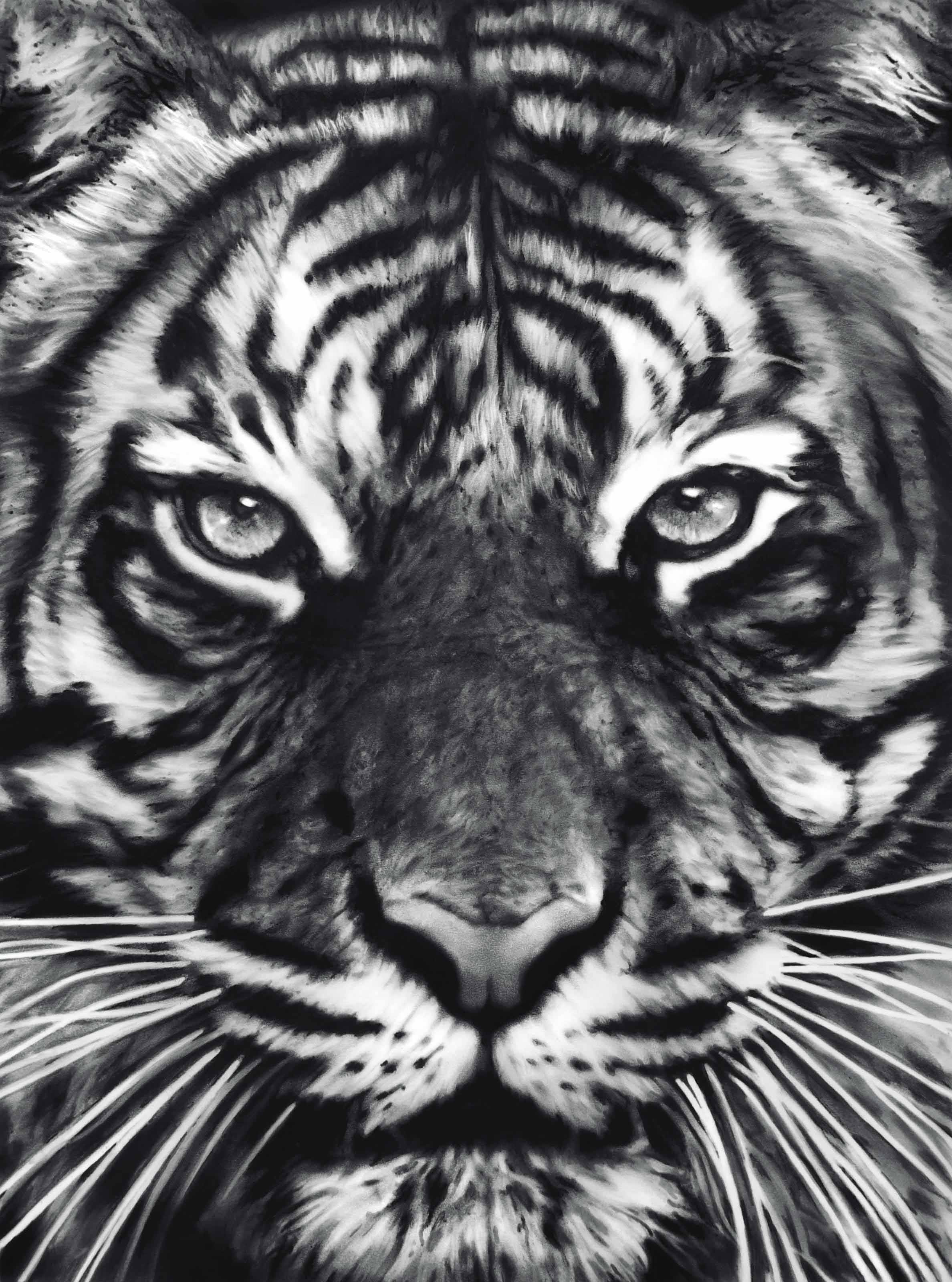 Untitled (Leo)