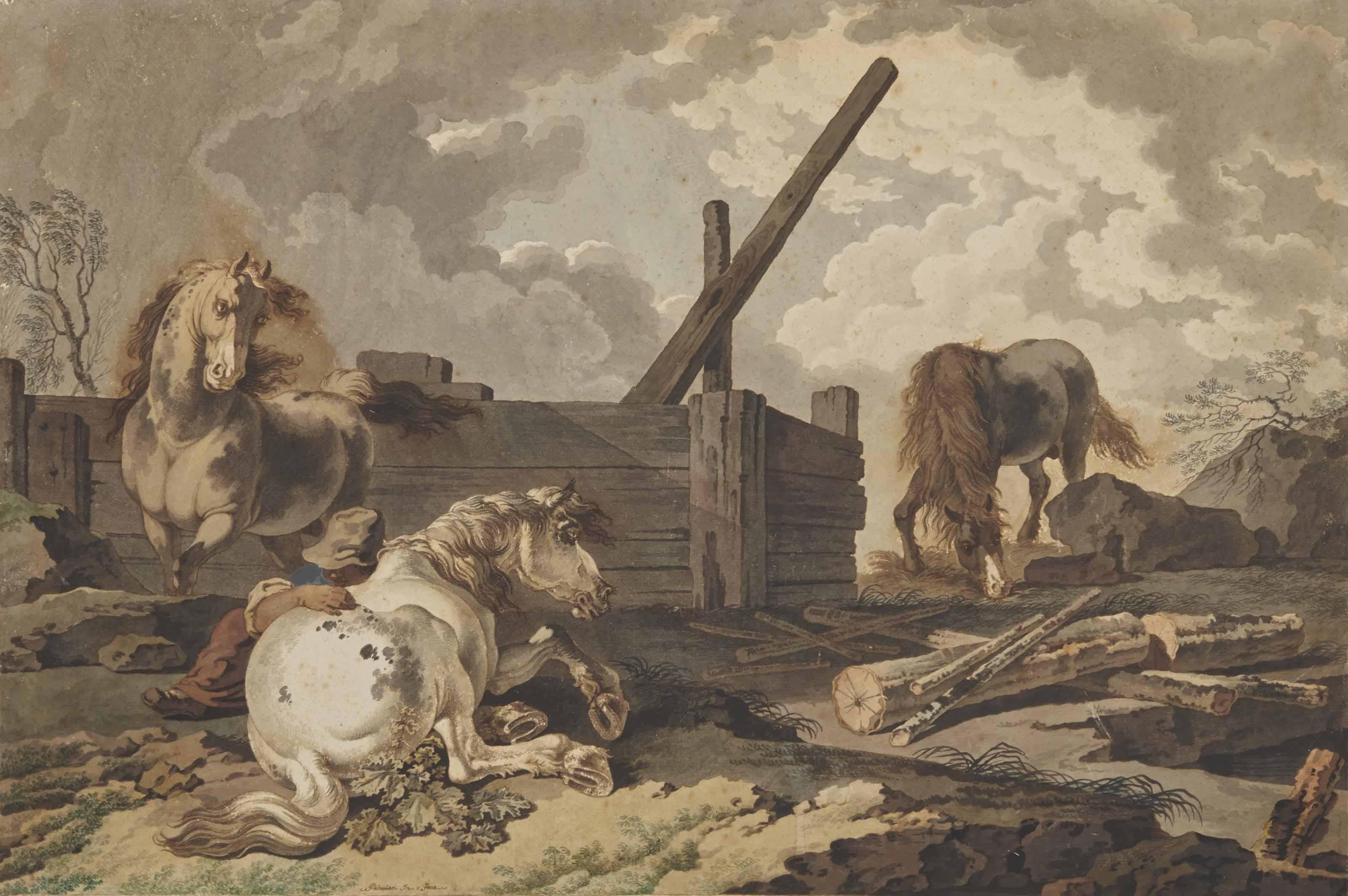 Jeune homme avec ses chevaux près d'une carrière