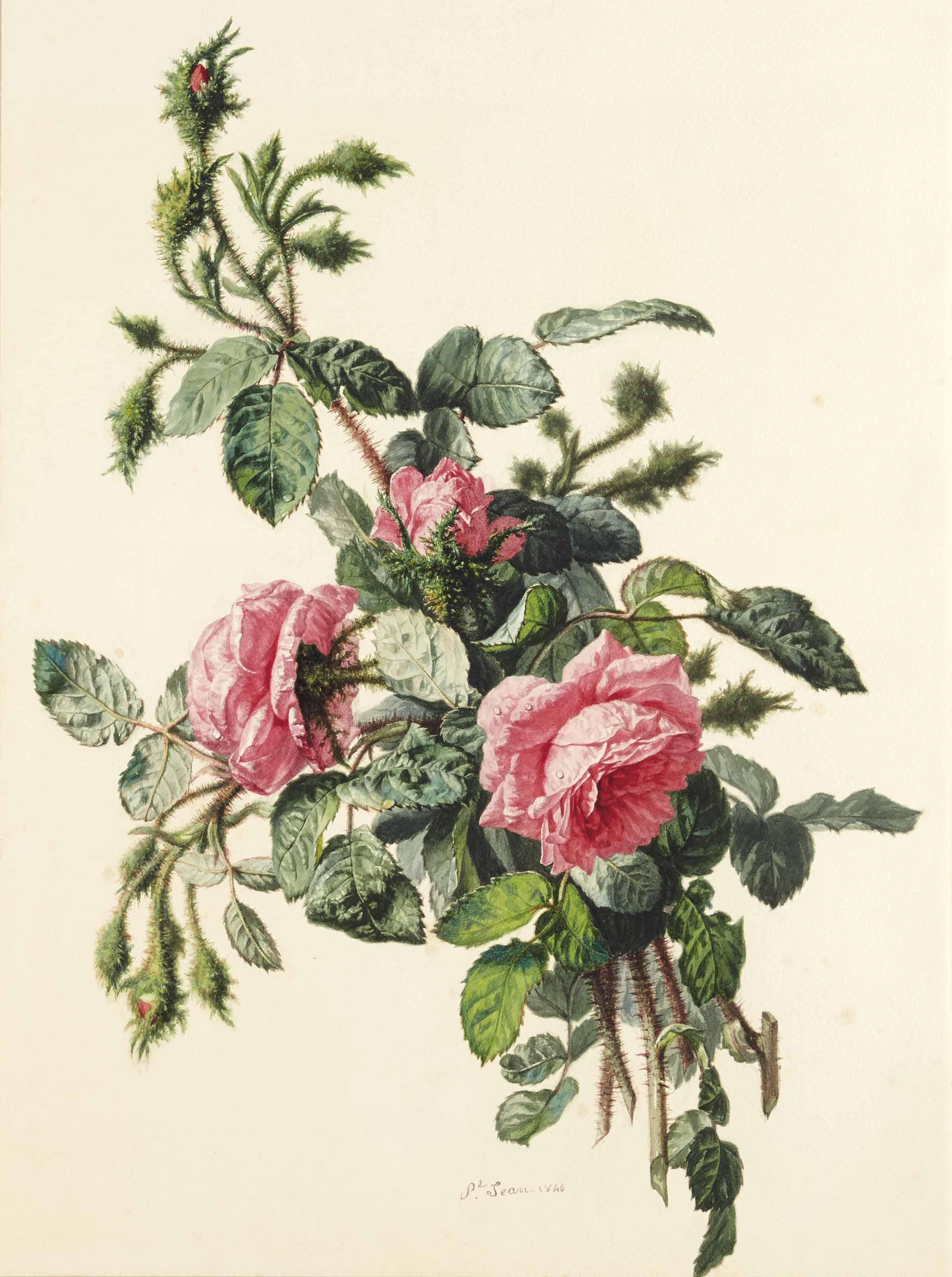 Simon SAINT-JEAN (Lyon 1808-1860)