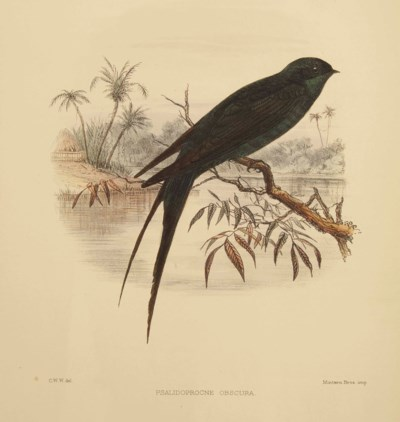 SHARPE, Richard Bowdler (1847-