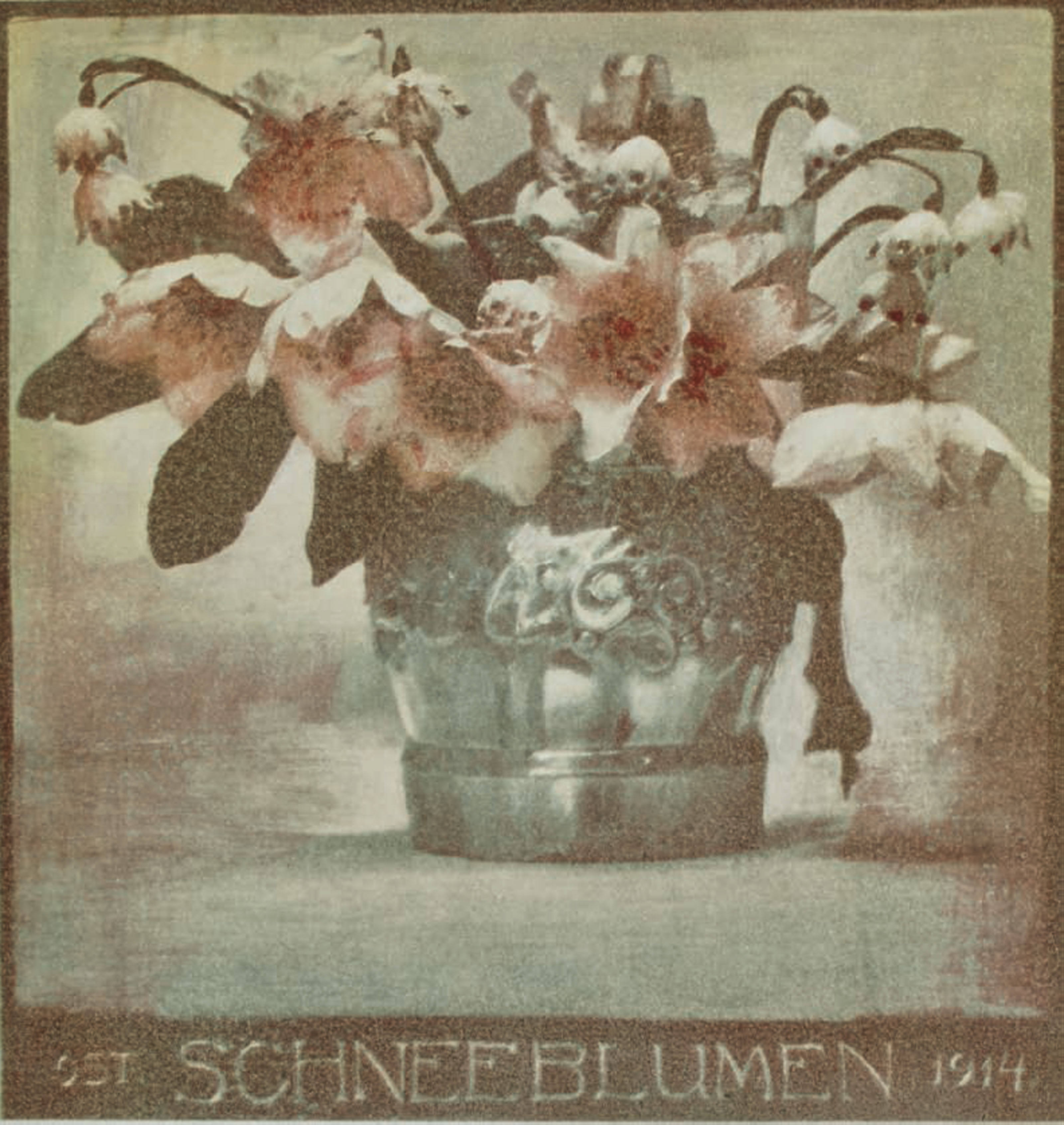 Schneeblumen, 1914