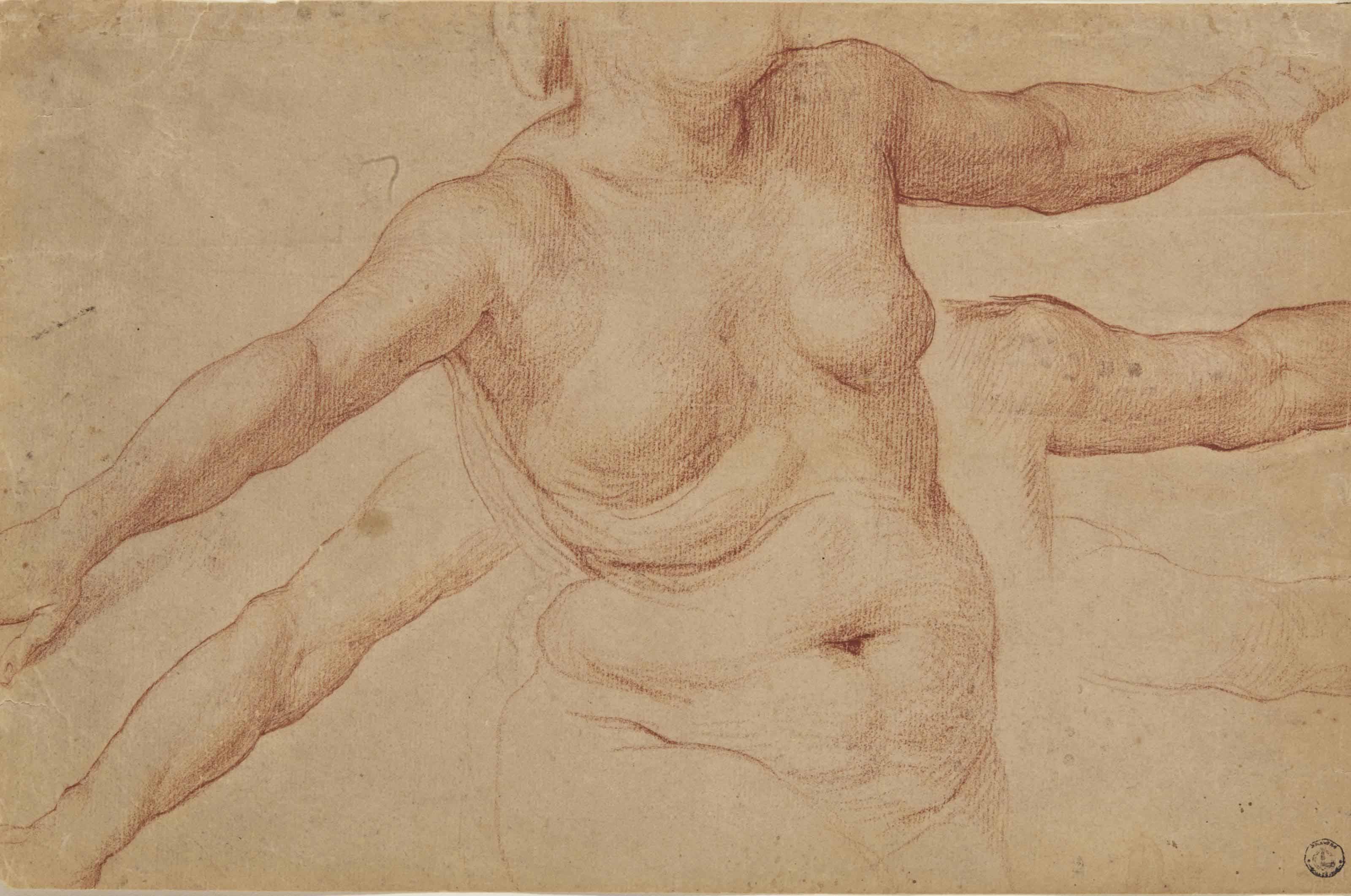Buste de femme nue, et études subsidiaires de ses bras