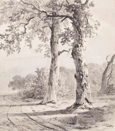 Remigius Adrianus Haanen (Oost