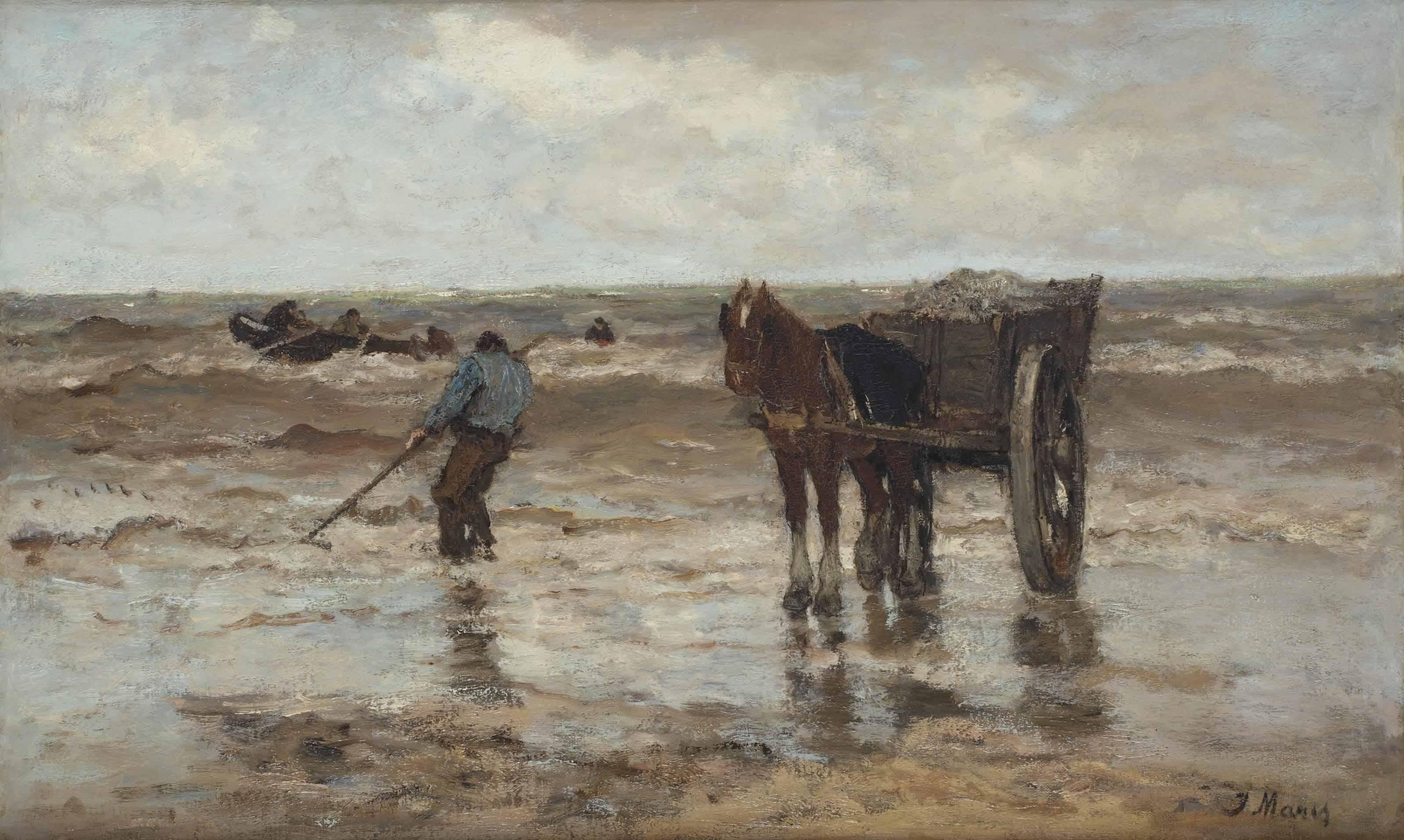 Gathering seaweed