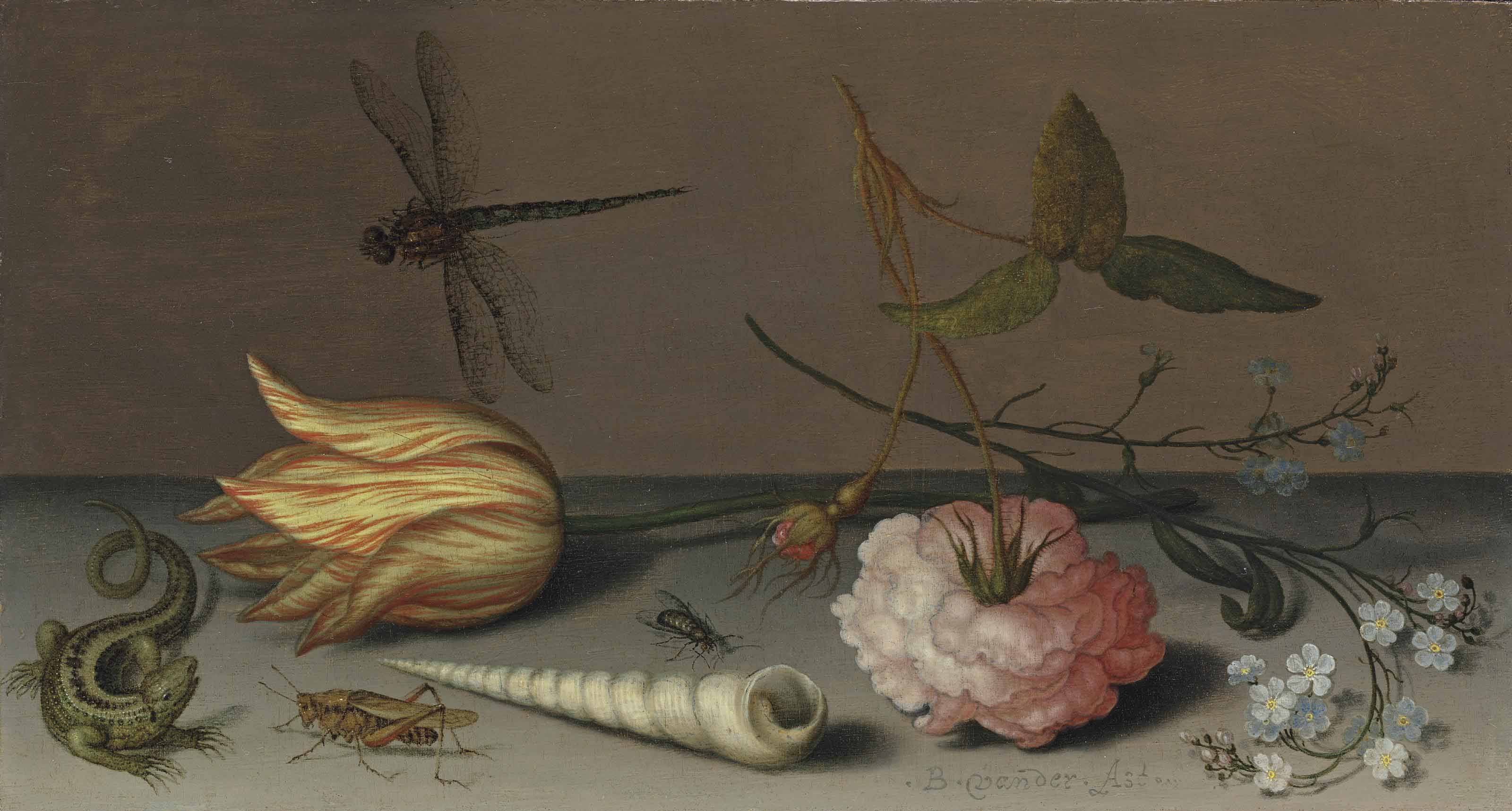 A tulip, a carnation, spray of forget-me-nots, with a shell, a lizard and a grasshopper, on a ledge, a dragonfly in flight