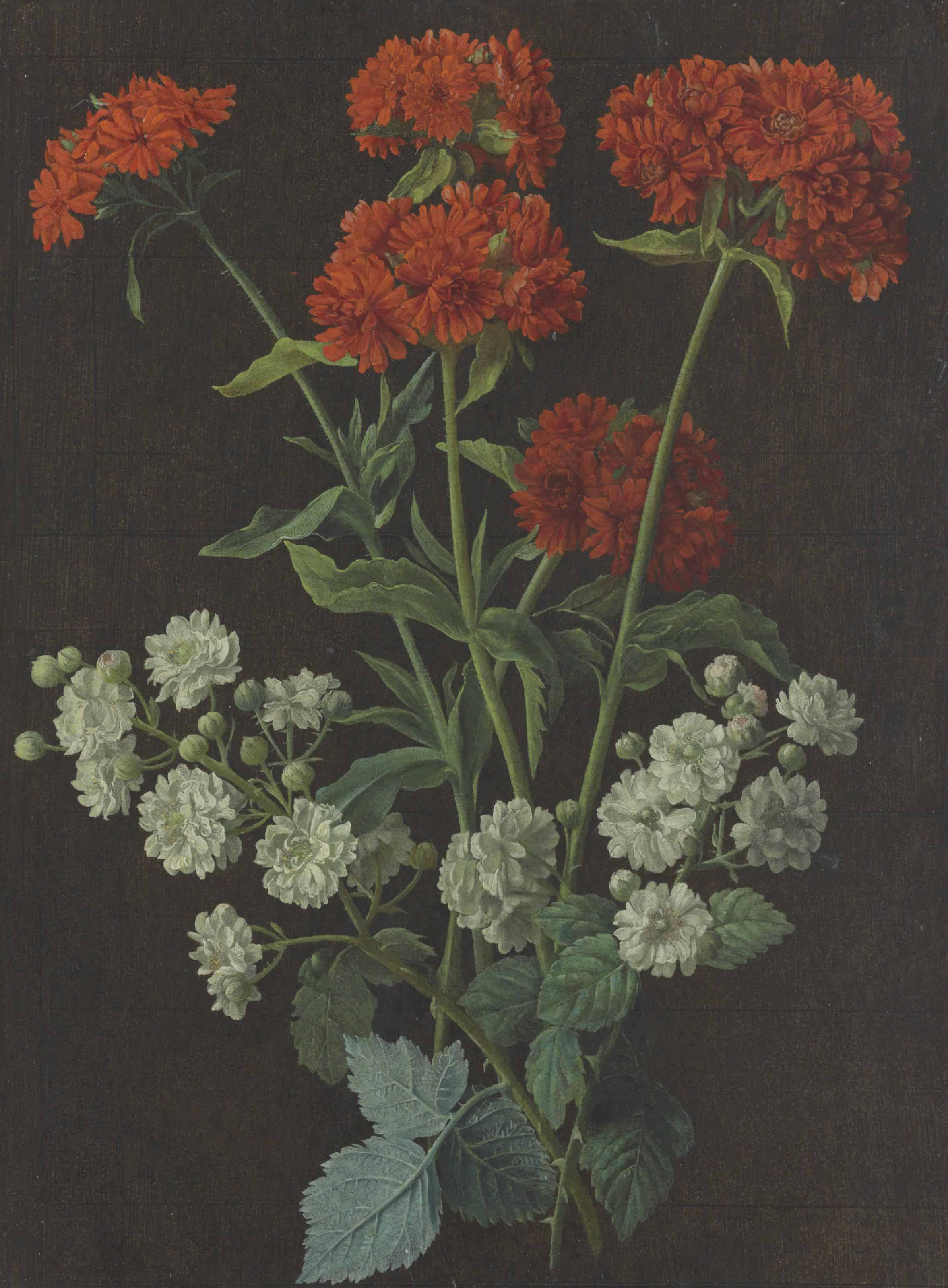 Still life with a spray of red verbena and white roses
