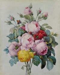 A bouquet of roses and rose buds, with a Small Copper butterfly