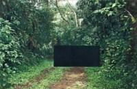 Landscape with Matte