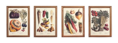 TWELVE COLOURED LITHOGRAPHS OF