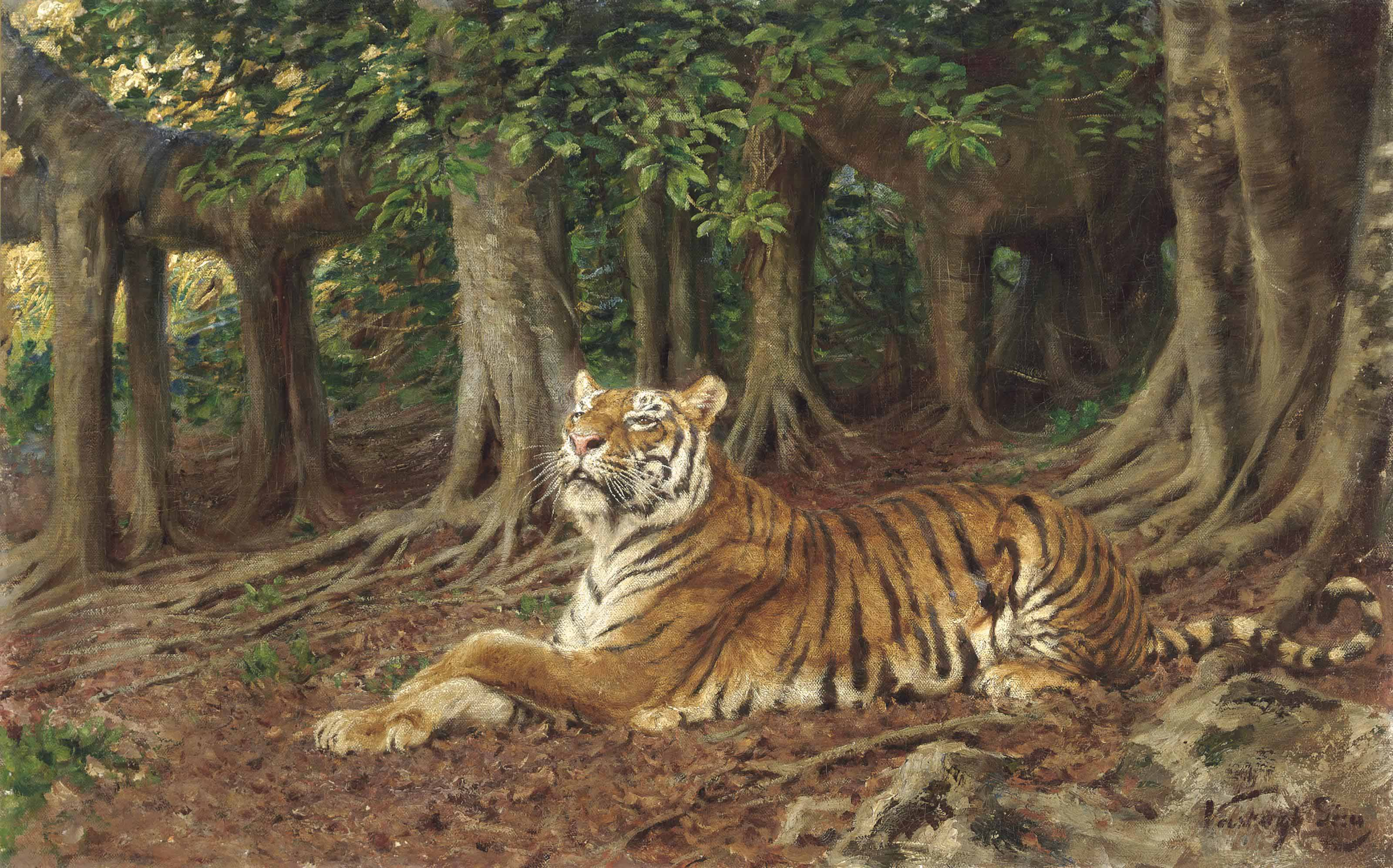 A tiger in a forest