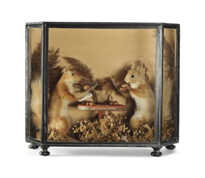 A LATE VICTORIAN TAXIDERMY GRO