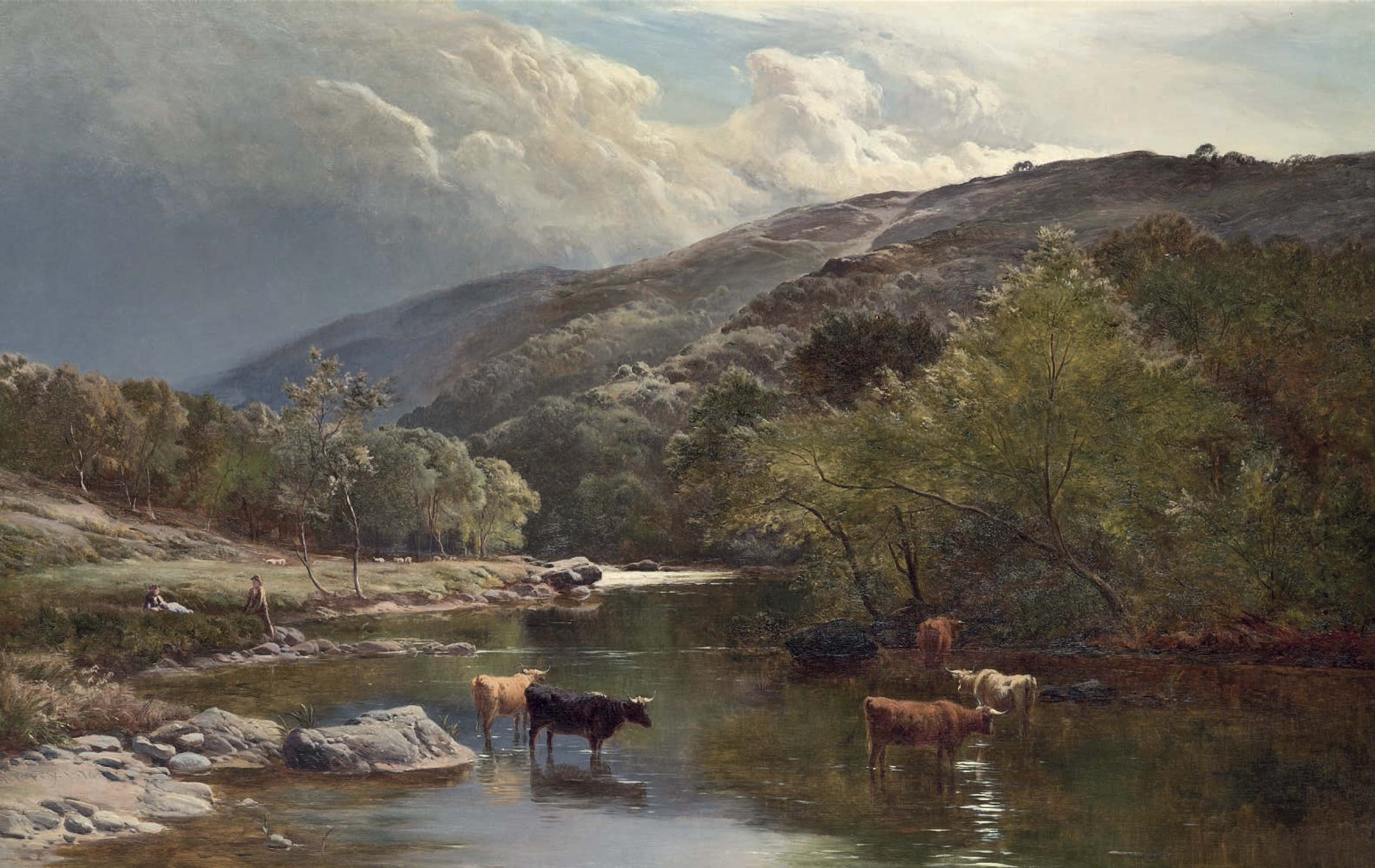 Cattle watering in the River Lyn, North Devon