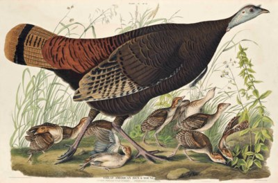 William Home Lizars (1788-1859