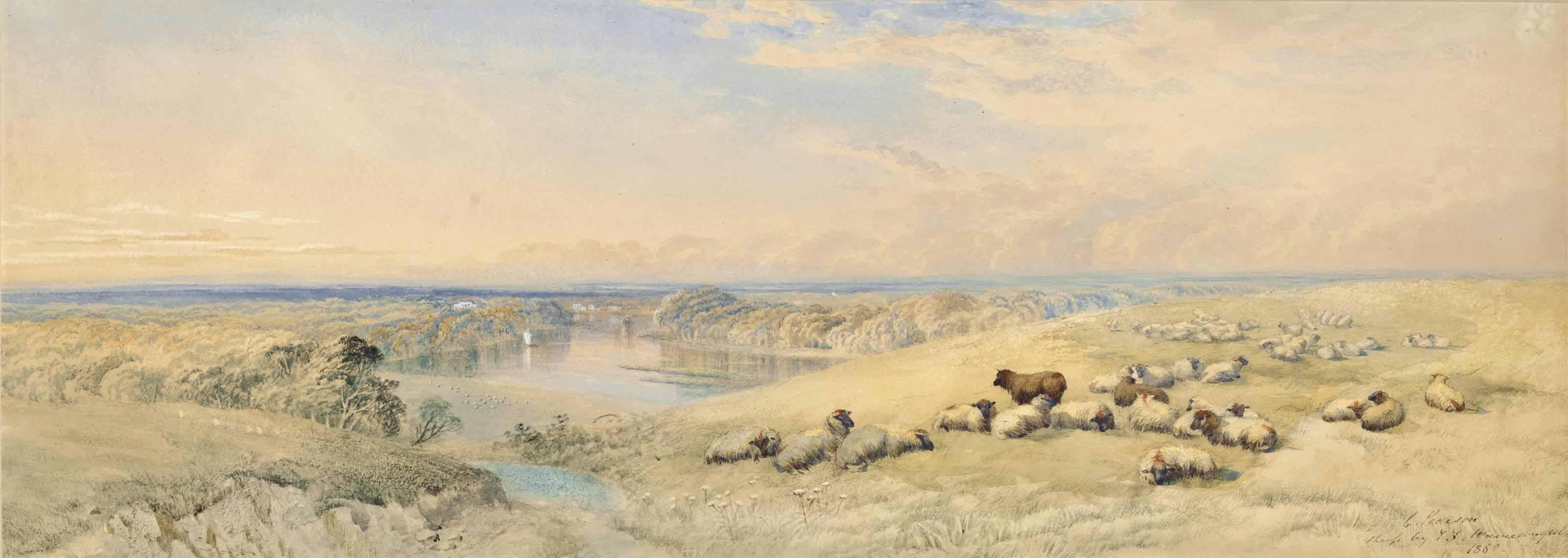 Sheep resting on a hillside, a river beyond