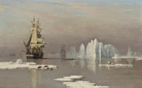 The Northern Whale Fishery: The Hull whaling ships Isabella and Swan in Baffin Bay with seals and polar bears on ice floes before them