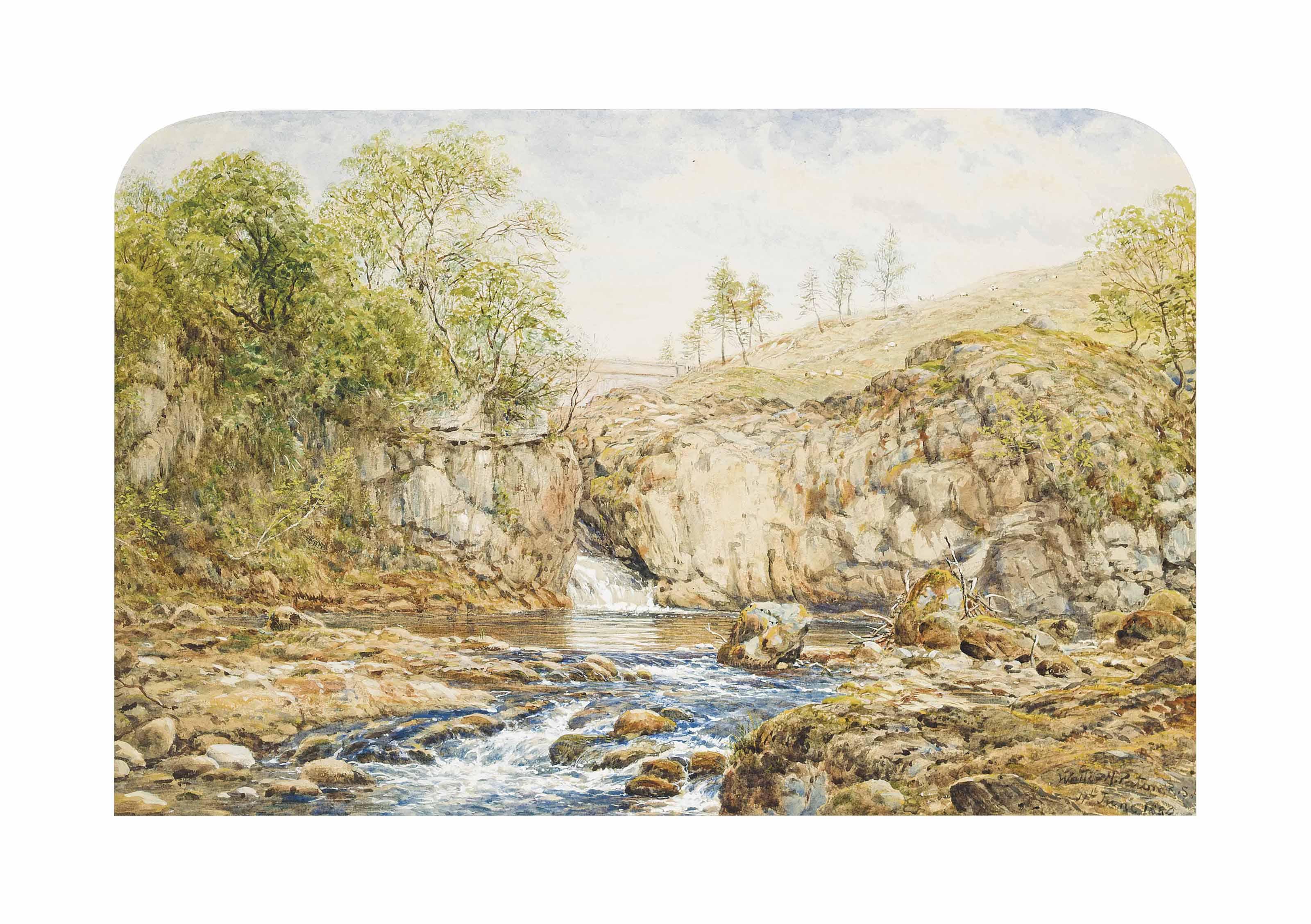 Sheep grazing above a Scottish waterfall