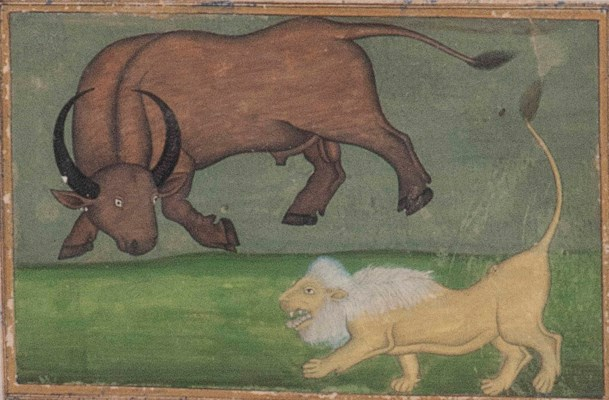 A LION AND A BULL