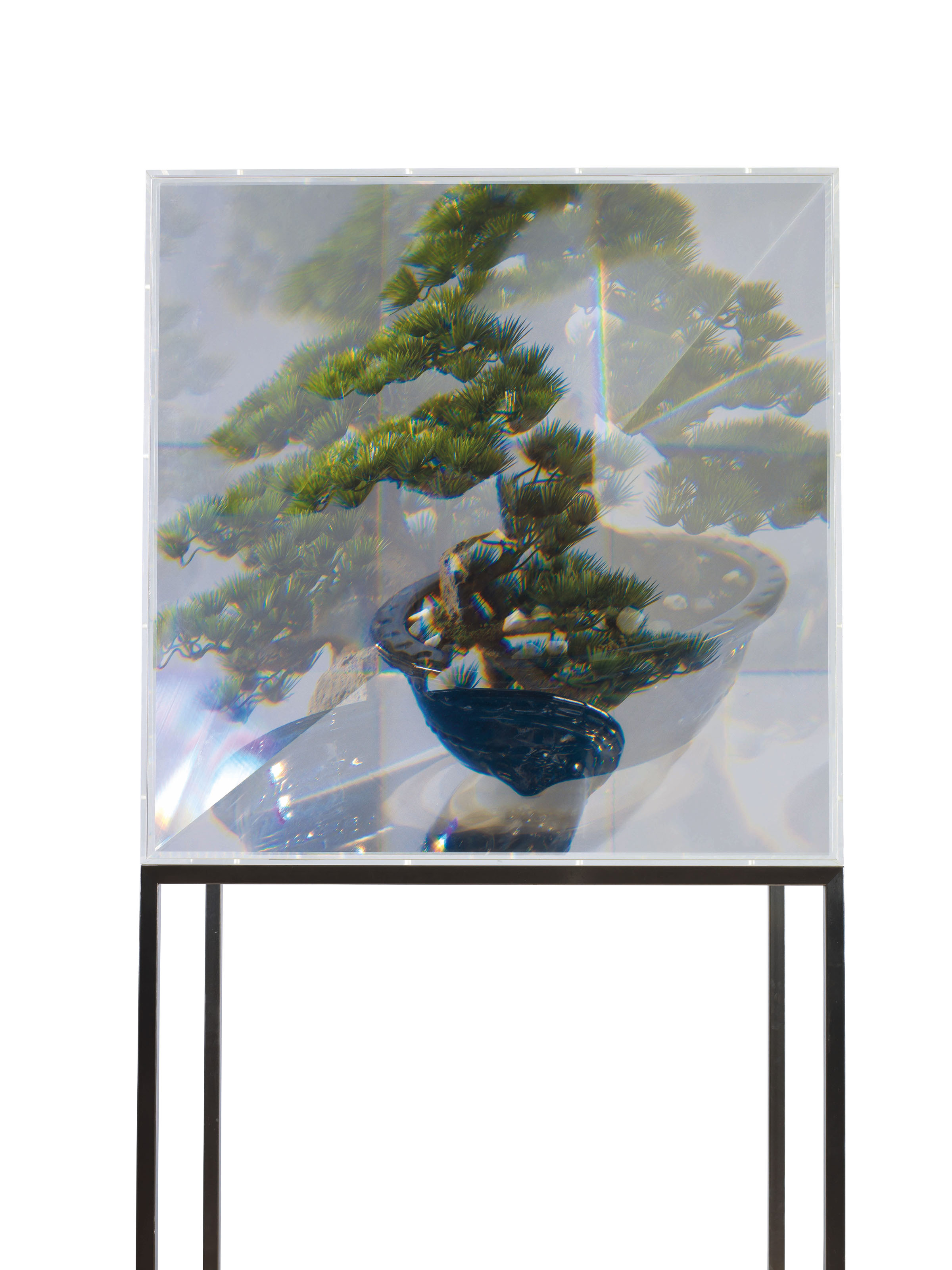 PixCell Toy-Bonsai (Pine)