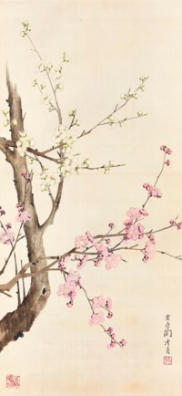 Plum Blossoms in Two Colours