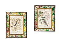 A SET OF TWELVE FRAMED ORNITHOLOGICAL AND BOTANICAL HAND-COLORED ENGRAVINGS,
